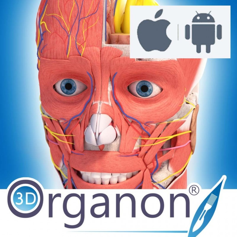 Organon online reference dragon nest fast gold tips for brown